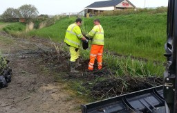 Working for our local authorities on an environmental reed bed project along Bude Canal banks.